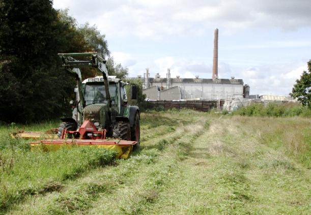 Hier wird das Gras für unseren Umweltfreundlichen Umkarton gemäht